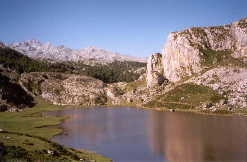 lagoercina_jpg.jpg